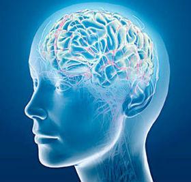 brain-supplement http://www.ketonesbodyprotry.com/inteligen/