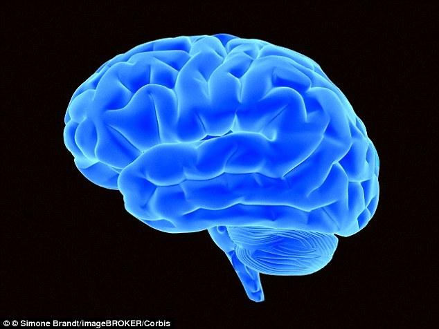 1411575942262 wps 55 Bright blue brain 3D illu http://www.ketonesbodyprotry.com/inteligen/