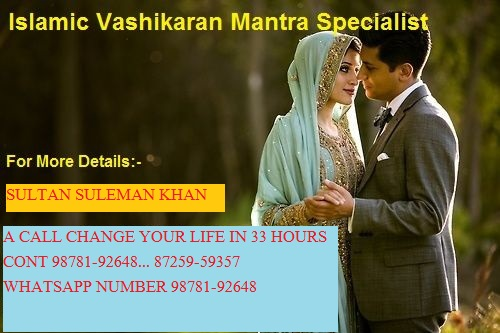love problem solution()()baba ji delhi 98781-92648 Picture Box