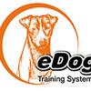 remote training collars - eDog Australia