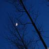 maan - Nature calls