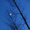 maan2 - Nature calls