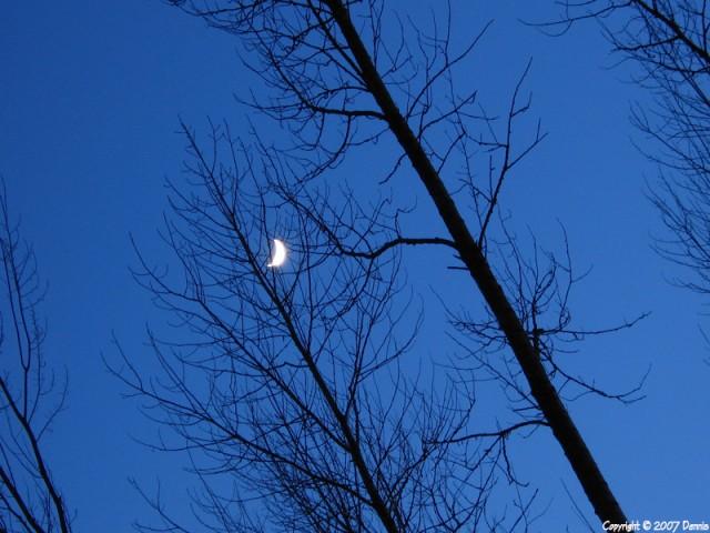 maan2 Nature calls