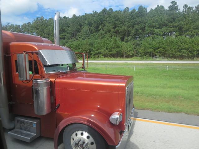 IMG 3242 Trucks