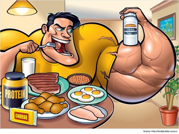 Muscle-Building-Diet-Food http://t-rexmuscleadvice.com/t-90-xplode/