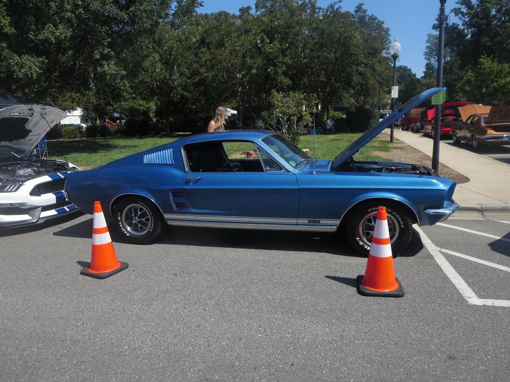 IMG 3721 - Cars