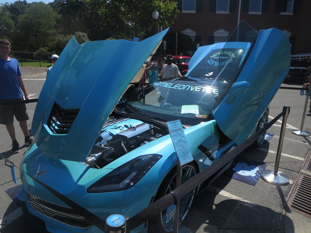 IMG 3755 Cars