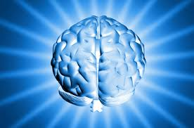 Top 11 Tips Any Healthy Brain ! Top 11 Tips Any Healthy Brain !