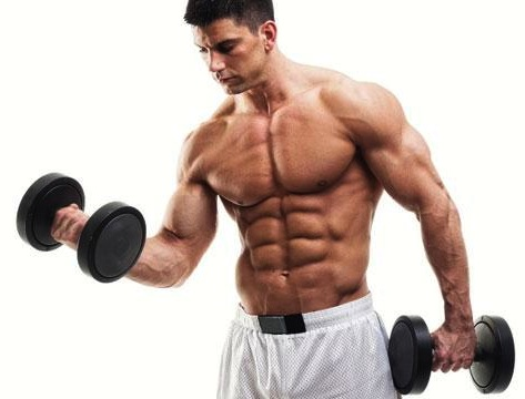 To Be Able To Eat To Build Muscle Picture Box