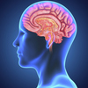brain-barrier - Is This A Brain Tumor That ...