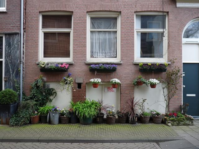 P1060047 amsterdamsite 6