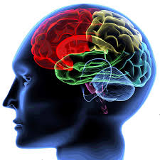 Music And Art Increase Brain Power Picture Box