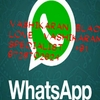whats App - guaranteed