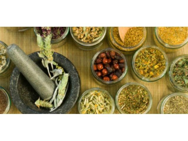 4016 herbalist sspiritualist healer,+27786477073,herbalist in portelizerbeth