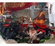 "images 91-9829791419""""LoST^^LoVE#vashikaran?::""specialist baba ji"