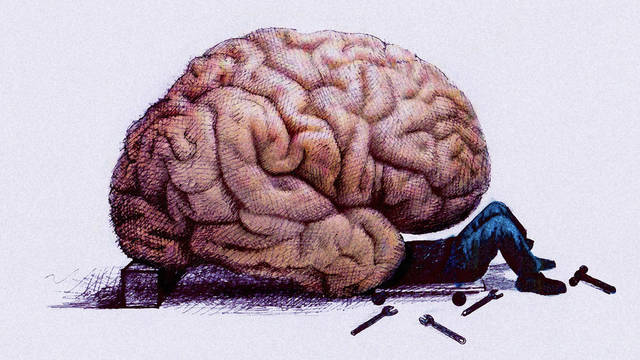 make the most from your Brain brain