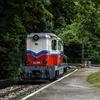 DSC 0287-BorderMaker - Roadtrip to Sziget '16