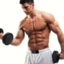 muscle-building - Picture Box