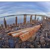 Union Bay 2016 05 - Landscapes
