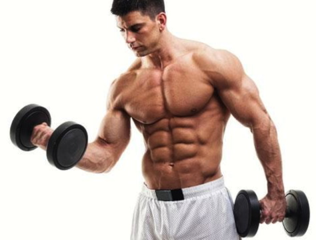 muscle-building Picture Box