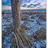 Frosty Comox 2016 05 - Landscapes