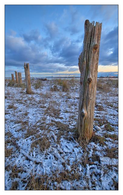 Frosty Comox 2016 06 Landscapes