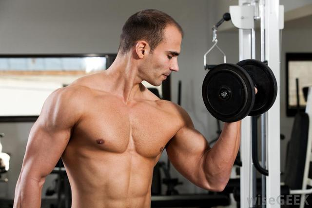 bodybuilding-with-weights http://fitnesseducations.com/muscle-force-fx/