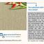 Berber carpet Impression Fl... - Impression Floors