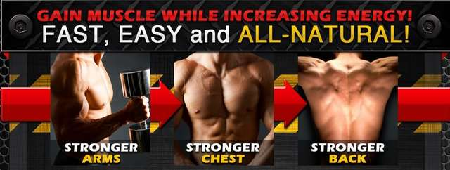 Nitric Muscle Uptake rush  http://newmusclesupplements.com/nitric-muscle-uptake/