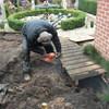 Tuin - Vijver en terras weg... - Gazon en de voorbereidingen...