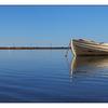 Rowboat Comox 2017 02 - Comox Valley