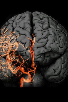 1cf32b487552f62b748ab209ec6ab9af http://powerupmale.com/alpha-brain-memory-and-focus/