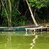 Sandoval Lake Lodge - Monte Amazonico