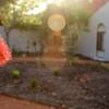Gardening - Perth Gardening
