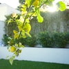 gardener - Perth Gardening