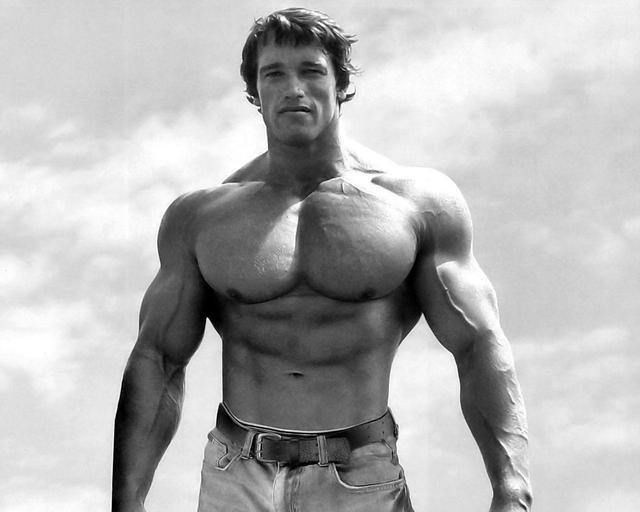 arnold-schwarzenegger-bodybuilding-photo-bodybuild Plzz Click Here:=====>>> http://megacleanseradvice.com/test-max-complete/
