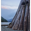 Comox Lake 03 2017 - Landscapes
