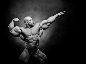 muscle vision by n o n a m e-d5k11kb-300x225 http://alphajackedhelp.com/endurance-test-x/