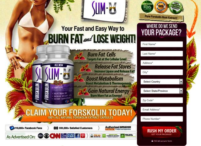 buy-forskolin-slim-u Exactly how does  Slim U Forskolin Job?
