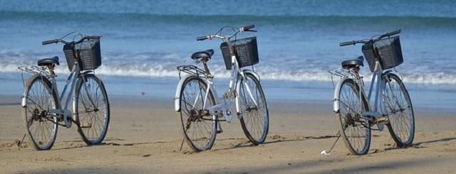location de vélo Fréjus 83600 4 Location Vèlo, Moto, Scooter Frèjus