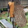 adrianus-aindes-pupis-asmat... - melanesische kunst