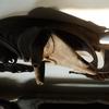 sepik-kandingai-mask 778944... - melanesische kunst