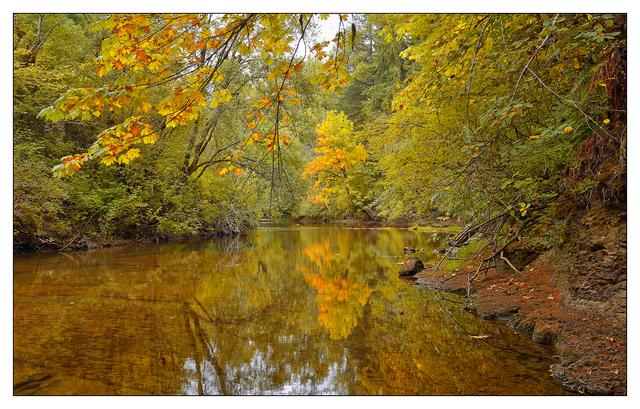 Tsolum River 2017 2 Nature Images