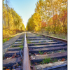 Autumn Tracks 2017 3 - Comox Valley