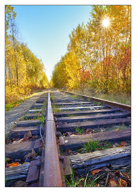 Autumn Tracks 2017 3 Comox Valley