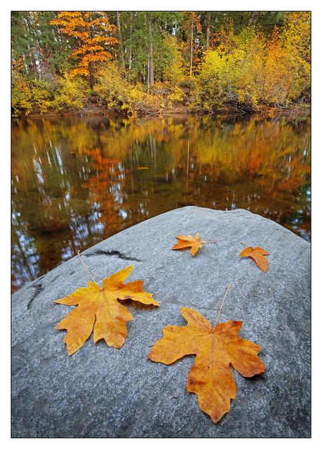 Tsolum River 2017 4b Landscapes
