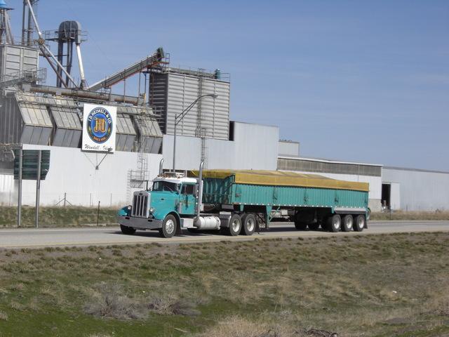 CIMG8328 Trucks