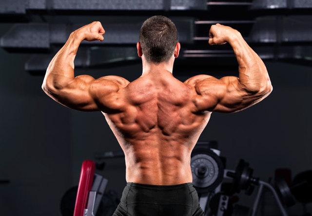amp-muscle main http://www.tophealthresource.com/bemass-muscle/