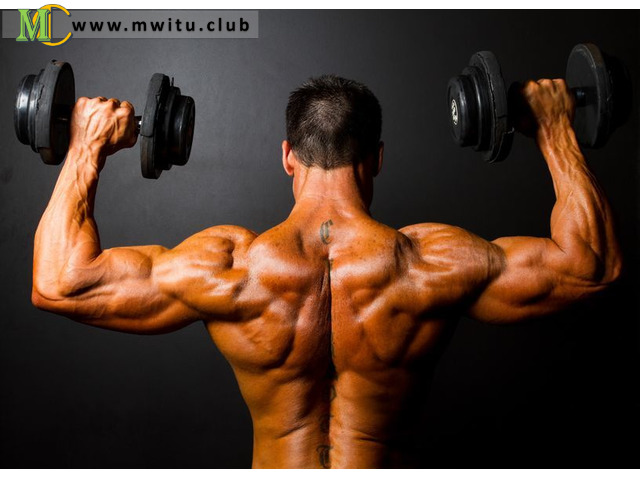 http://www.musclestrainrelief Picture Box