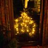 kerstboom2017 - balingehofforum